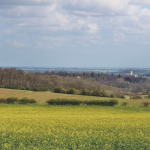 A View from the Wolds